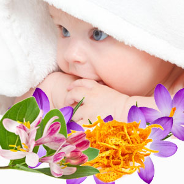 Baby Clean Fragrance Oil