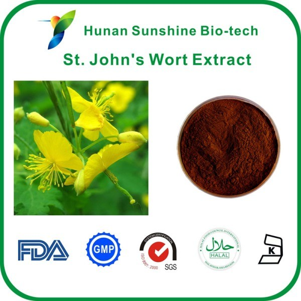 St. Johns-Wort-Extract8